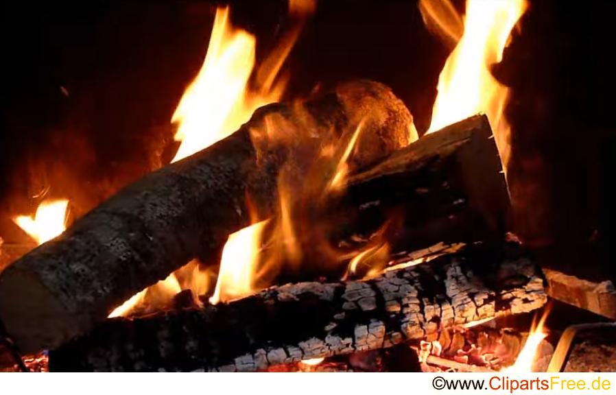 Feuer Holz Foto gratis
