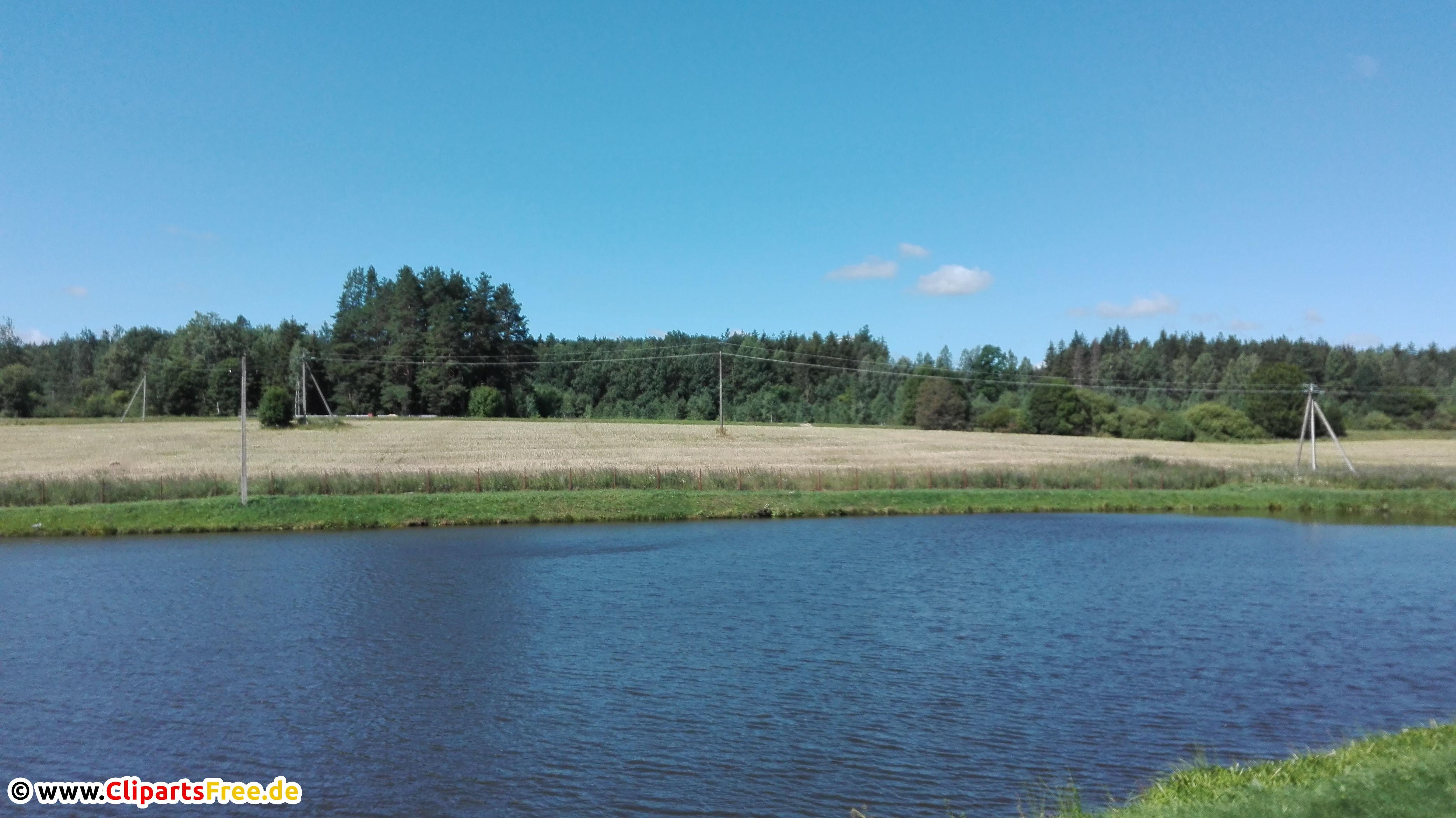 Fluss in Europa im Sommer Foto