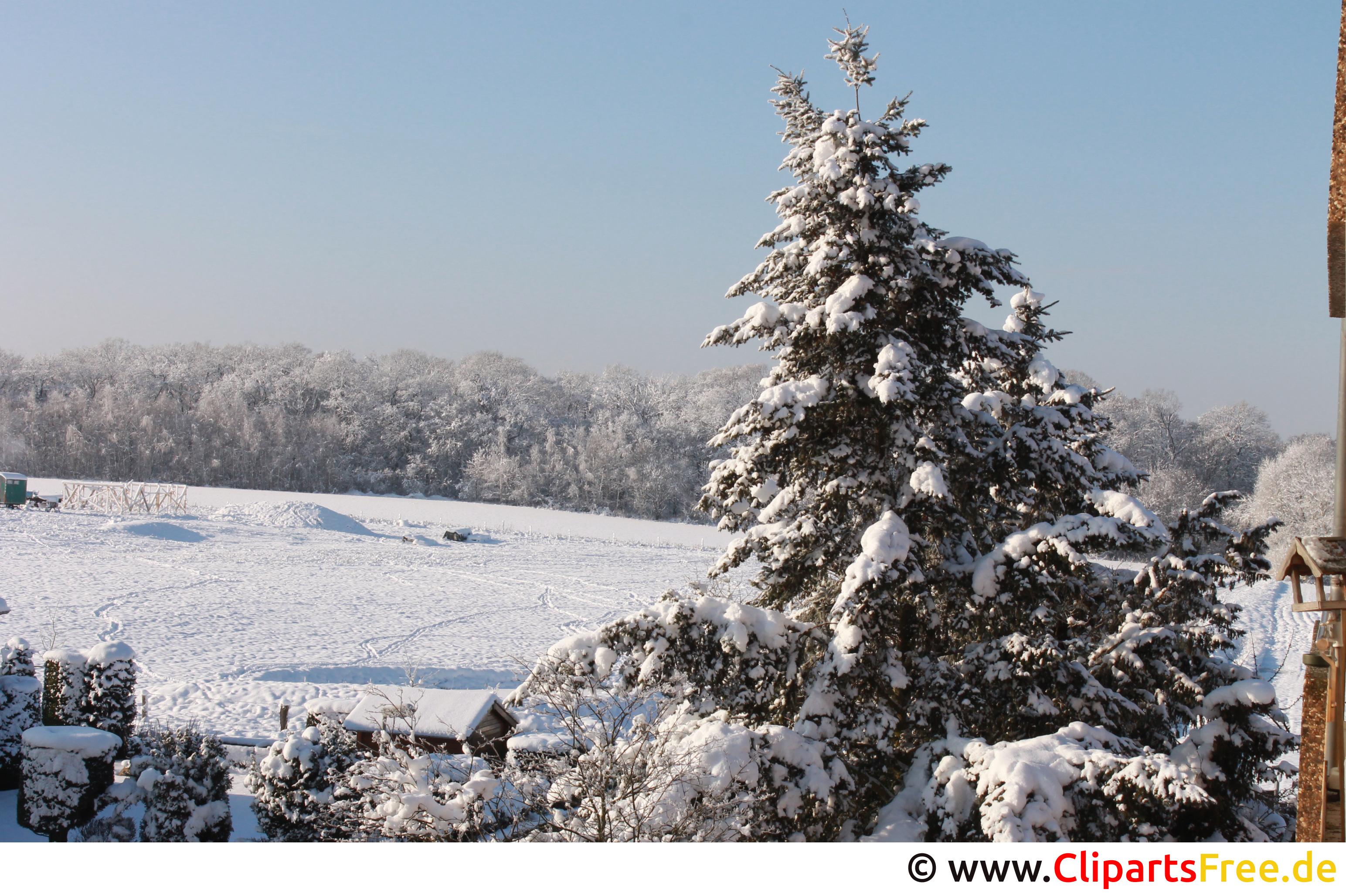 Winterlandschaft schönes Foto zum Thema Winter