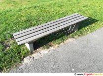 Bænk i parken foto gratis