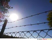 Stacheldraht am Zaun mit Sonne im Hintergrund Foto