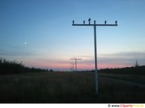 Sunset at the airport image, photo, background free