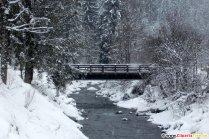 Bro over floden i skoven, vinterfotos gratis