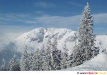 Vinterlandskab, smukt foto
