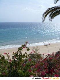 Flot udsigt over strandfoto gratis