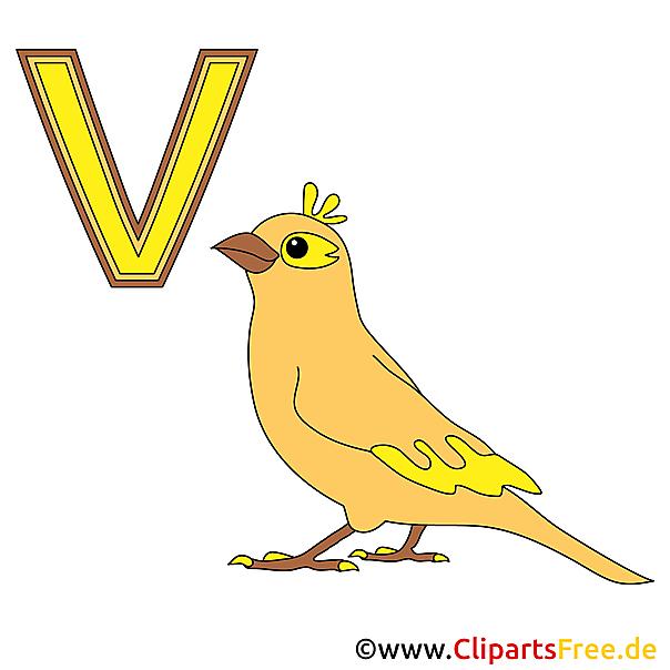 Kinder Alphabet - Vogel Bild