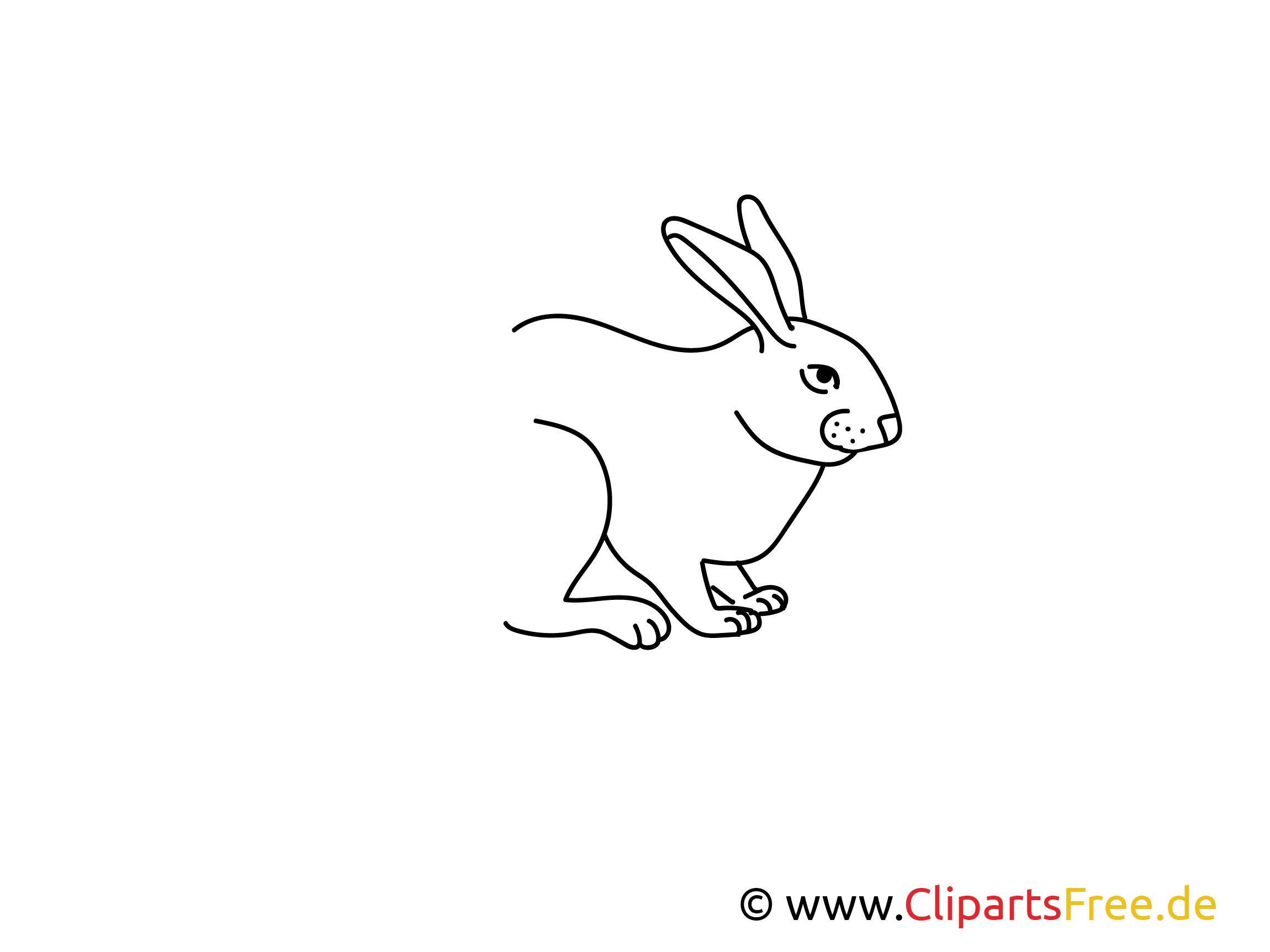 Kaninchen einfache Weitermal-Malvorlage