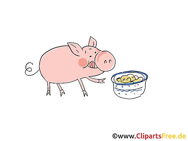 Bilder Bauernhof - Schwein beim Essen