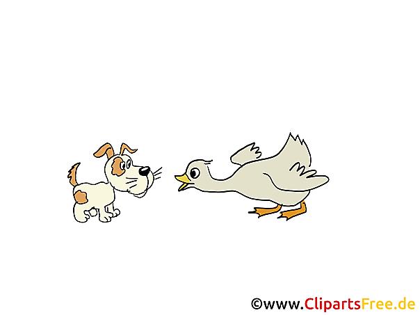 Afbeeldingen Landbouwhuisdieren - hond en gans