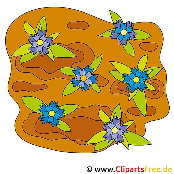 Blumen im Garten Bild Clip Art free