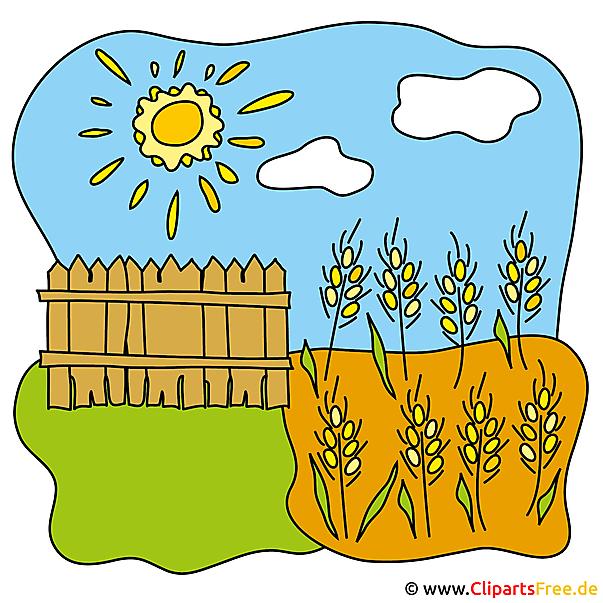 クリップアート画像の農場無料