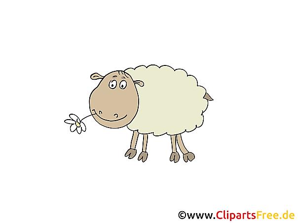 クリップアート羊
