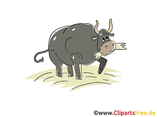 Rind Clipart, Bild, Cartoon, Grafik gratis