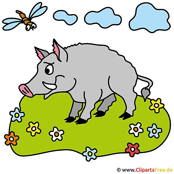 無料の豚写真クリップアート