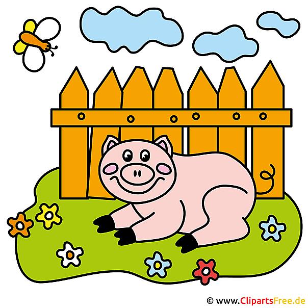 Piggy Cartoon Clipart - boerderijafbeeldingen