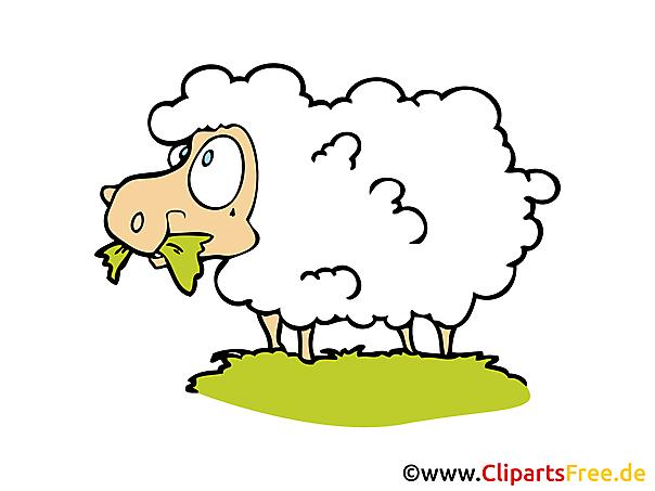 羊のクリップアート、画像、PIC無料