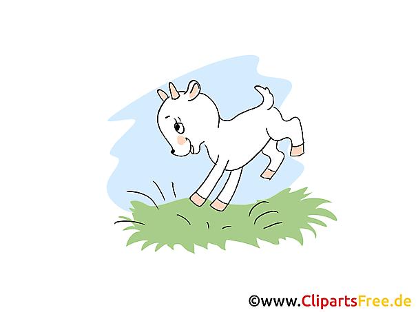 Zicklein Clipart, Bild, Cartoon
