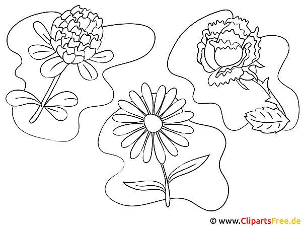 Bilder zum Malen und Ausdrucken Blumen