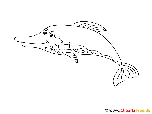 Deniz Hayvanlari Konusunda Yunus Boyama Resimleri