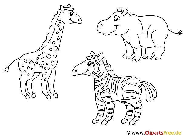 Hayvanat Bahcesi Boyama Sablonlari