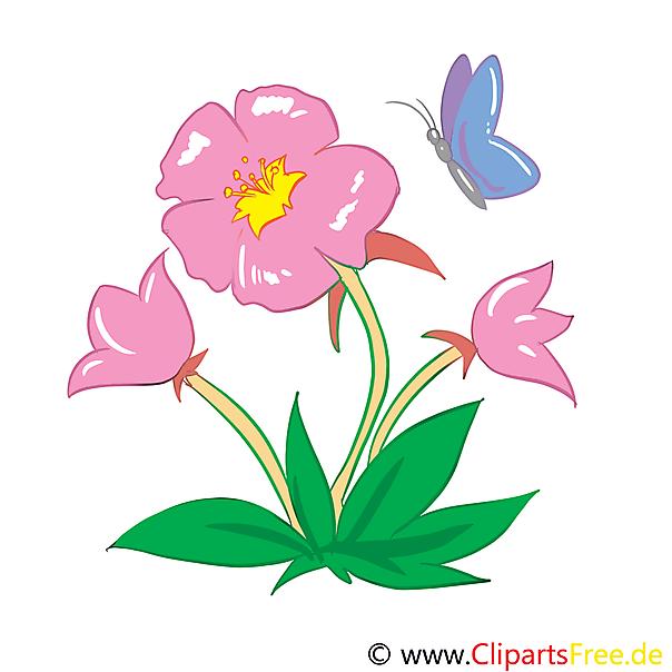 Marshmallow afbeelding, illustraties, afbeelding, illustratie gratis