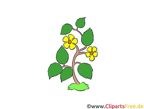 Wildflowers clipart, illustratie, afbeelding gratis