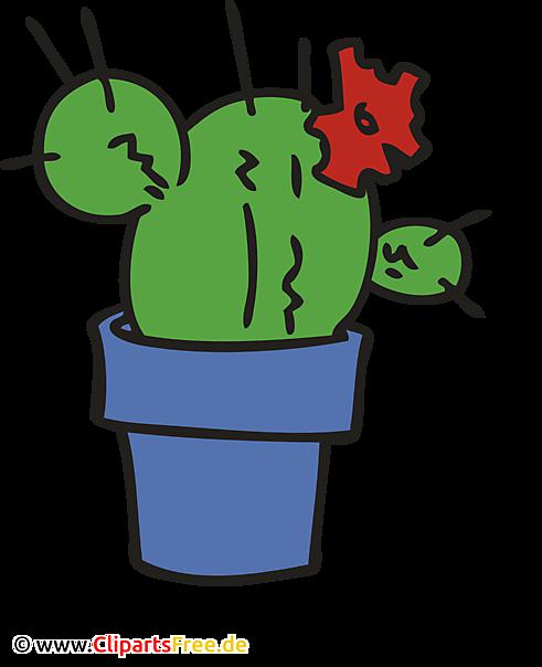 Kaktus im Topf Bild, Clipart, Illustration