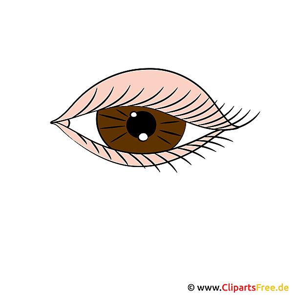 Auge Clipart