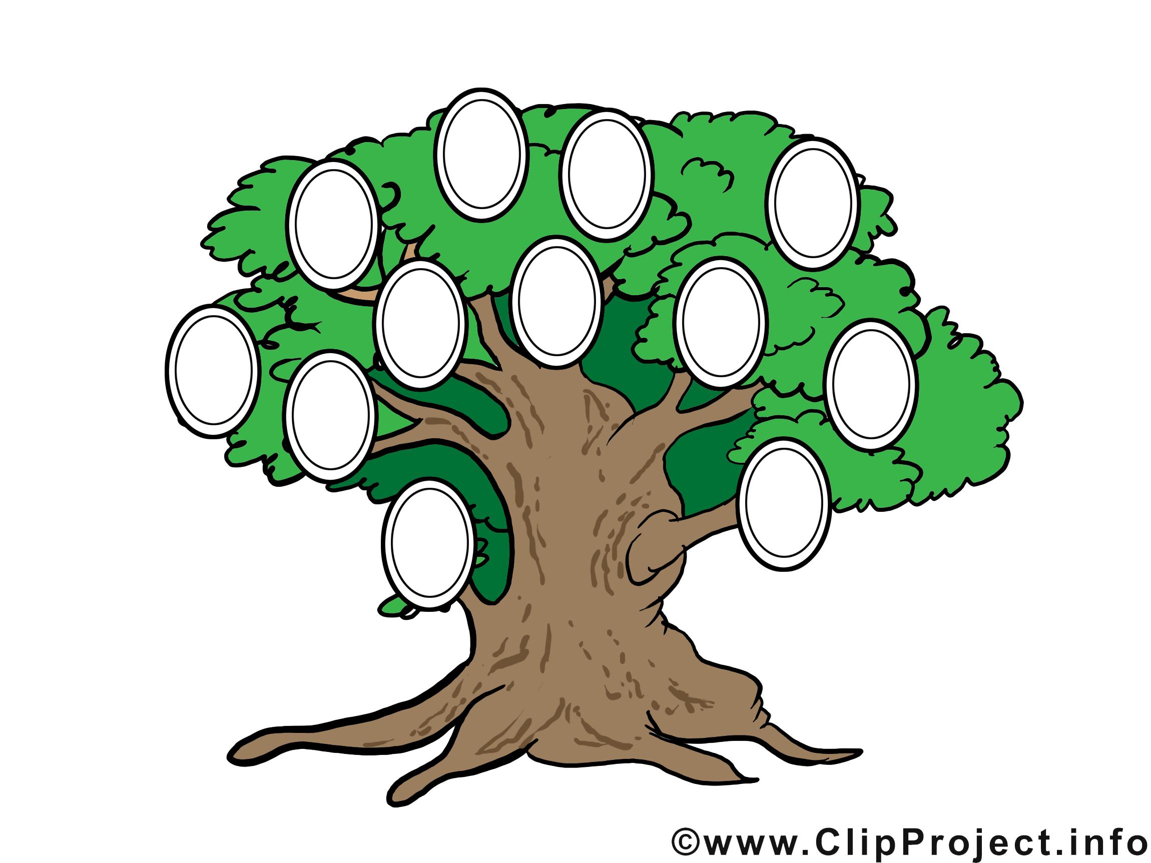 рисунок семейное дерево картинки организациях ип, которых