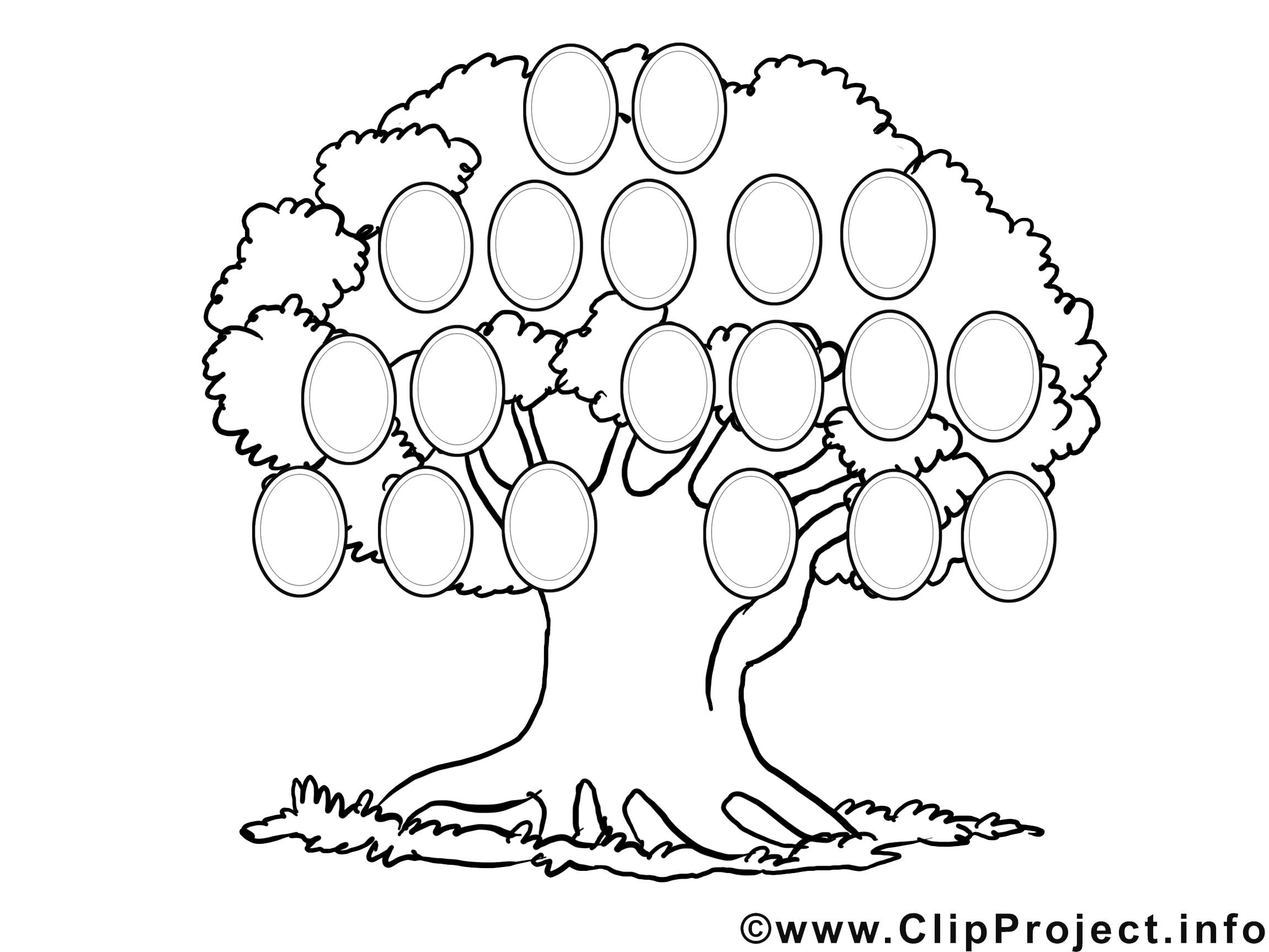 Генеологичне дерево шаблон раскраска