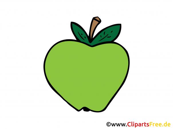 Grüner Apfel Bild, Clipart, Illustration, Grafik, Zeichnung kostenlos