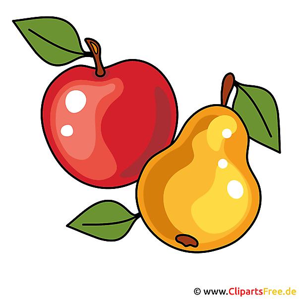 Apfel und Birne Bild