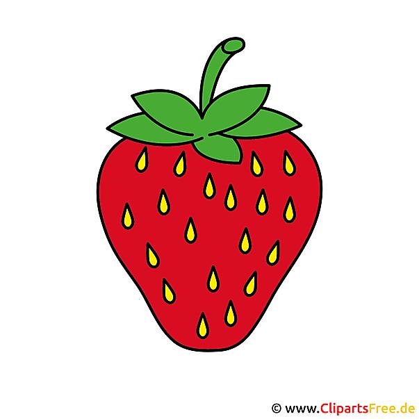 Erdbeere Clipart