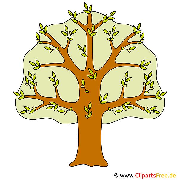 Kostenlos Clipart Baum