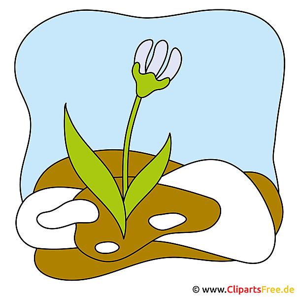 Viooltjes Afbeelding - Lente Clipart