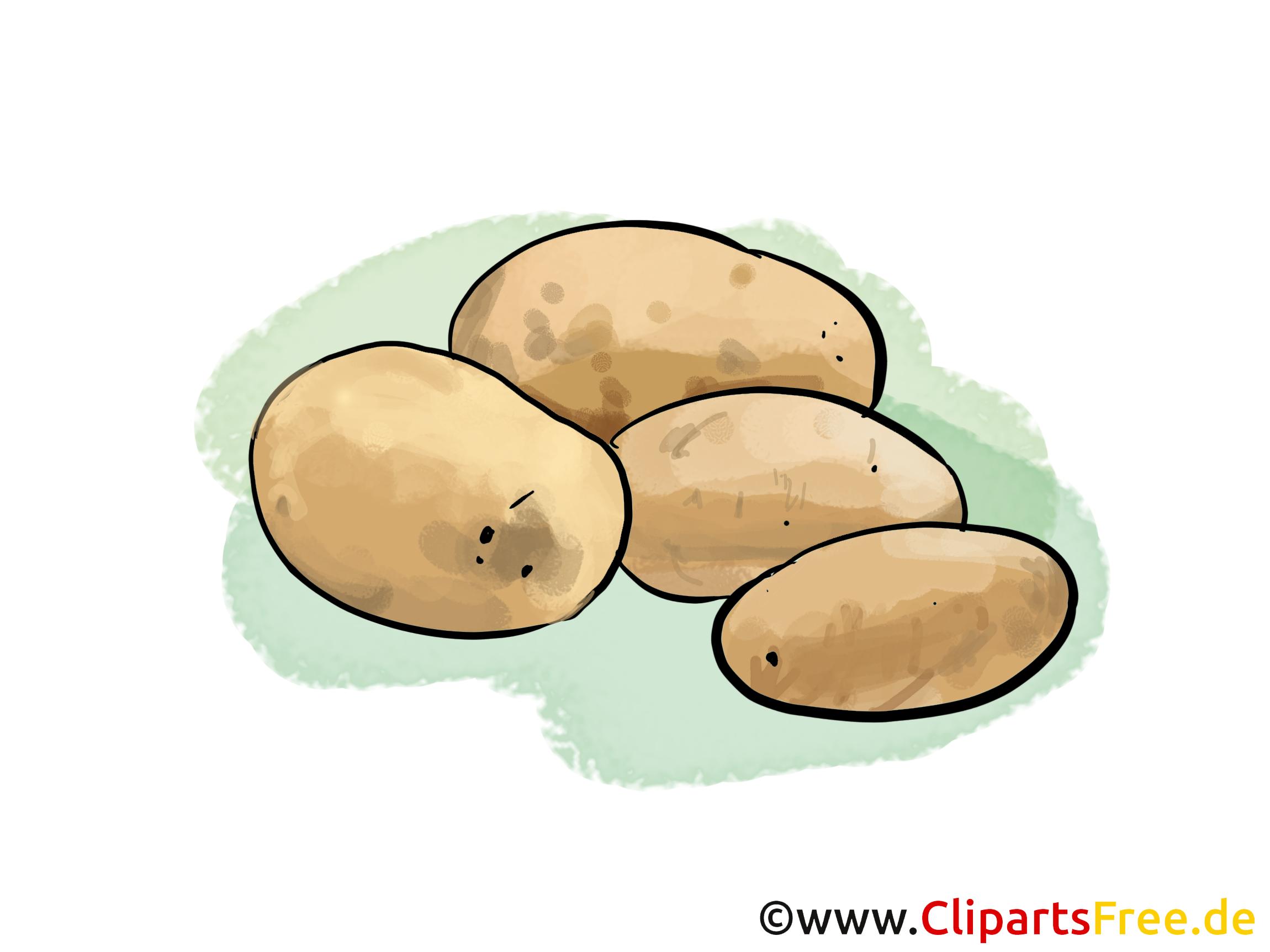 Kartoffel Bilder Kostenlos kartoffeln ernte clipart illustration bild