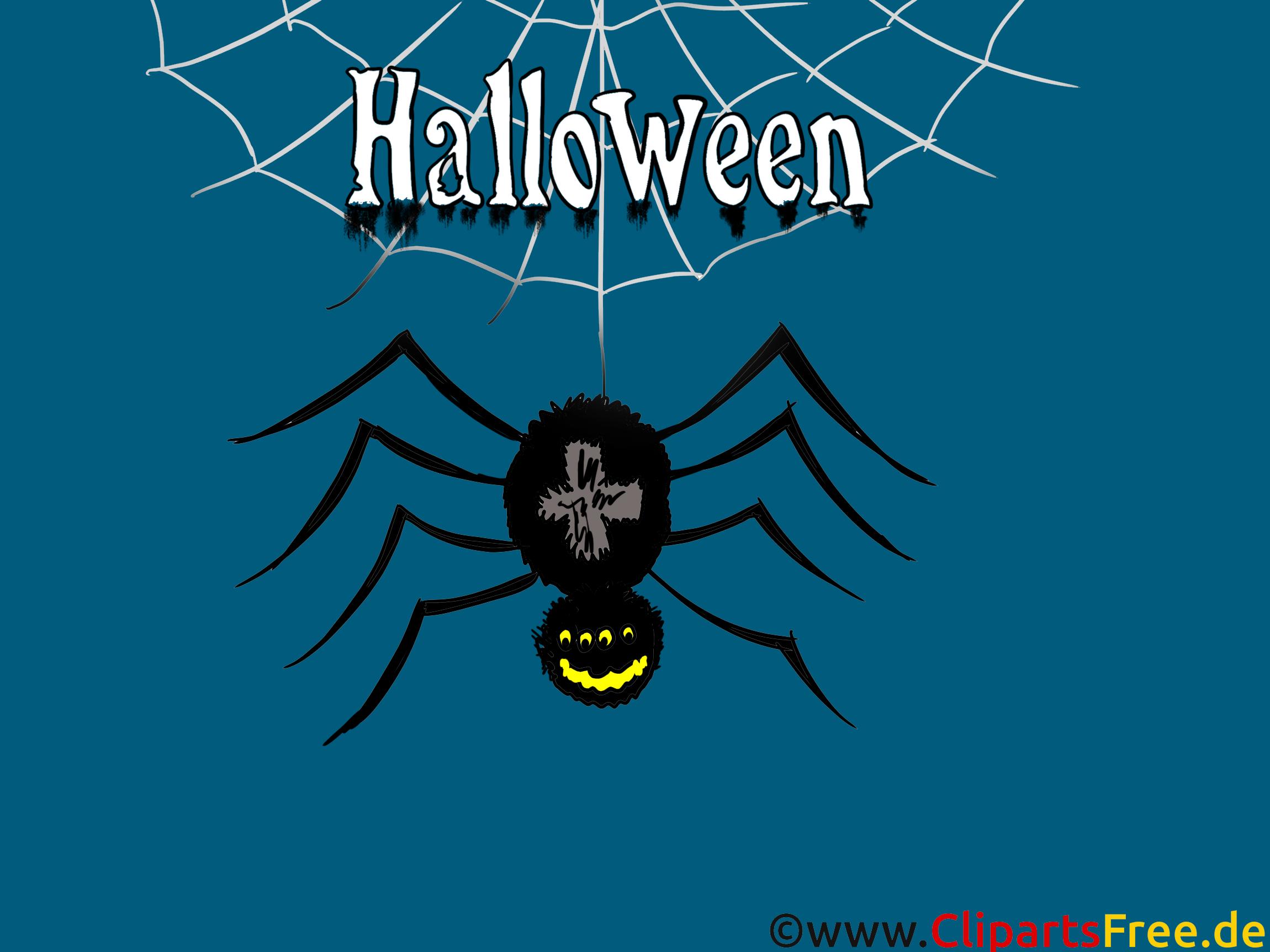 Bild Spinne zu Halloween