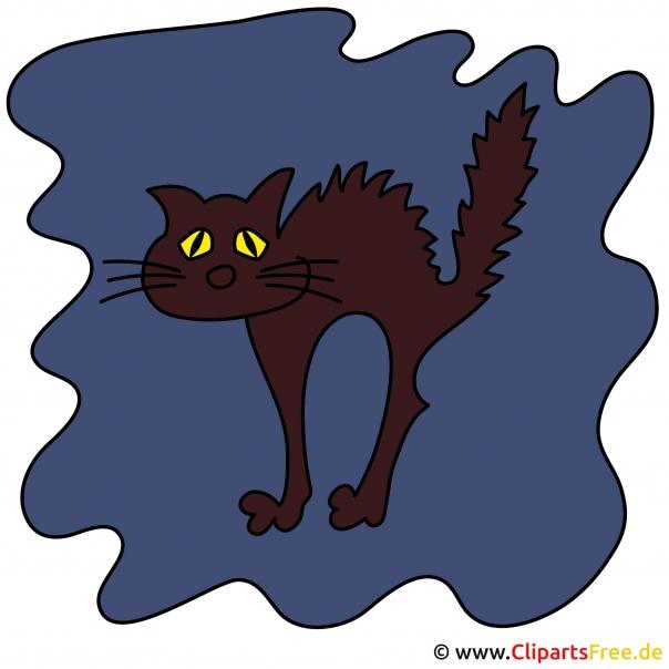 Gif zu Halloween - Black Cat