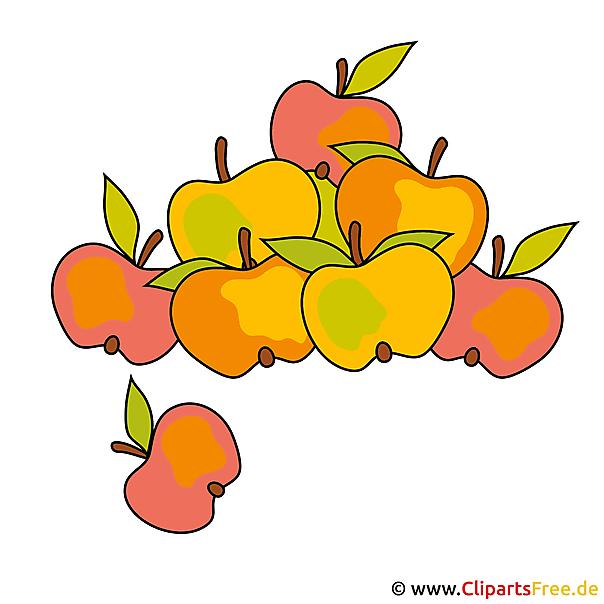 りんごクリップアート - 無料秋画像