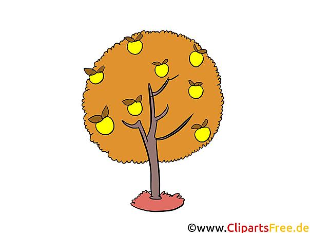 秋のりんごの木クリップアート、グラフィック、無料イラスト
