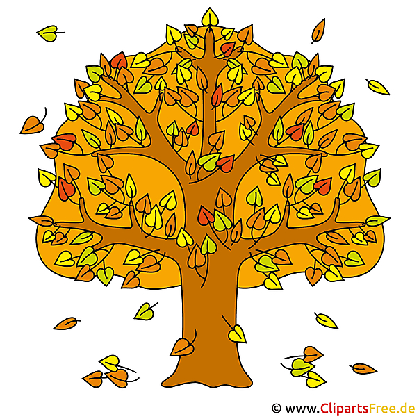 Baum Clip Art - Herbst Bilder gratis