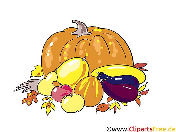 Schone Bilder Kostenlos Herbst Ernte Gemuse Und Obst