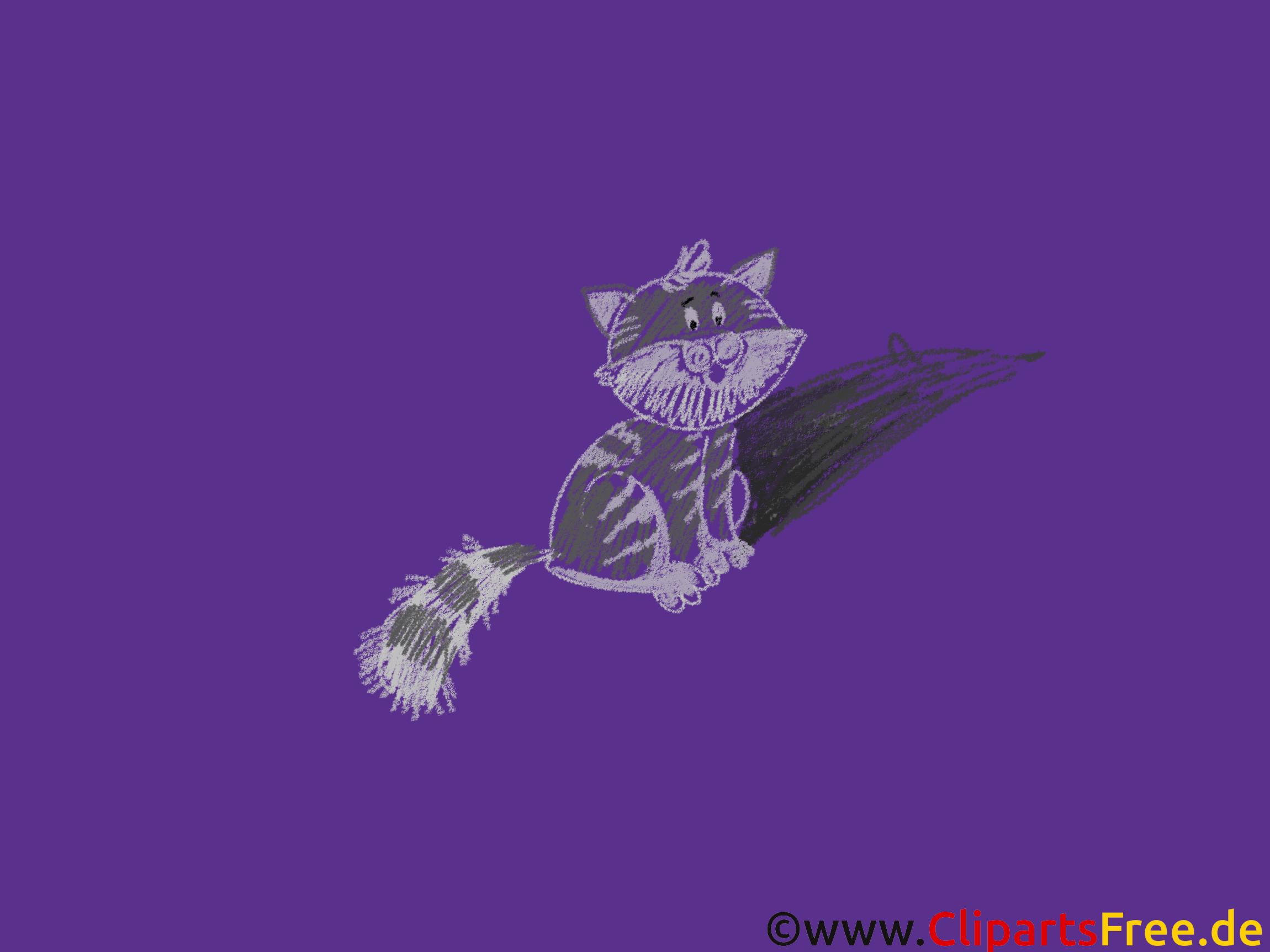 Gute Hintergrundbilder - Schwarze Katze