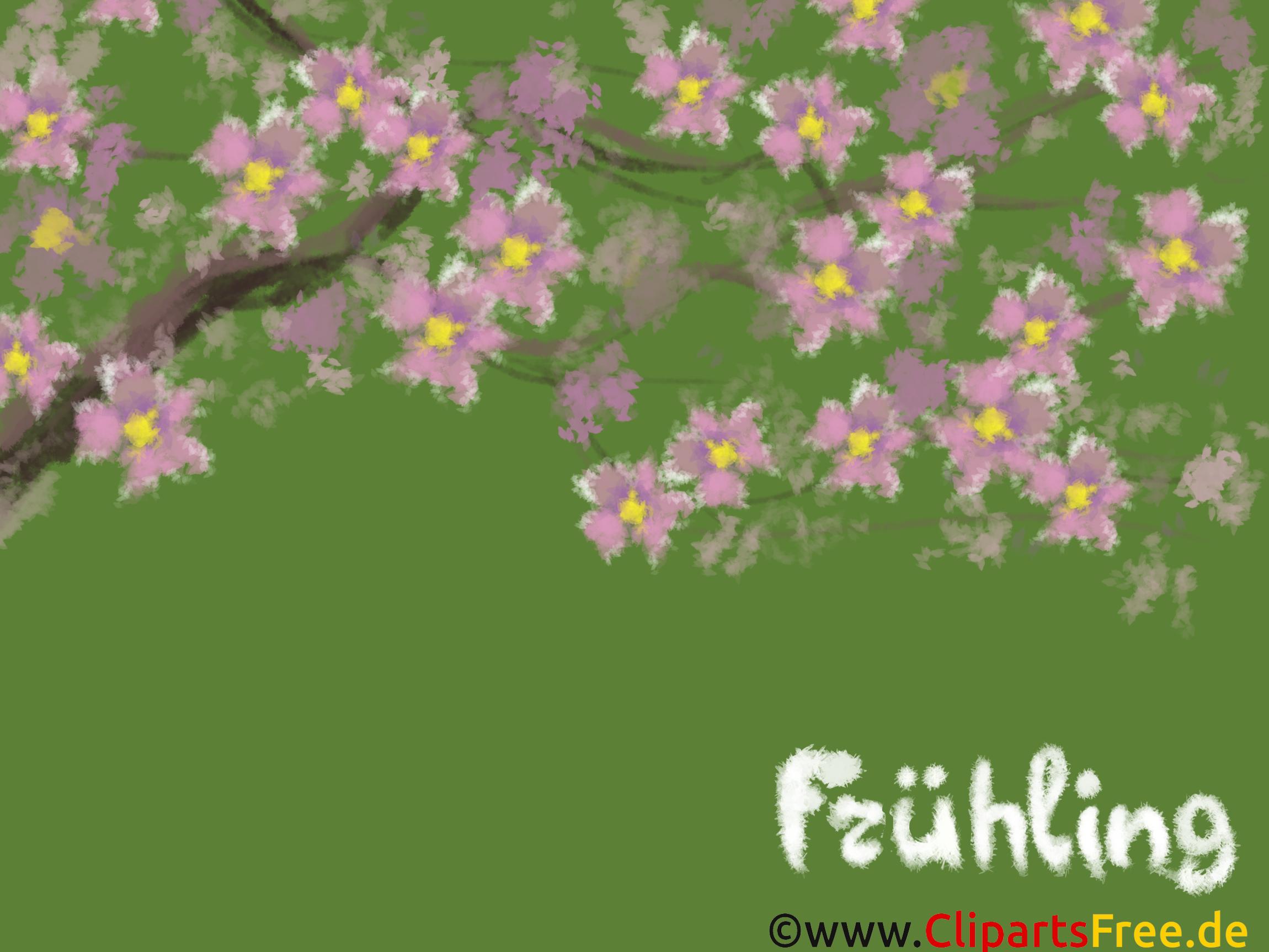 Hintergrund Bilder Sakura, Blumen, Frühling