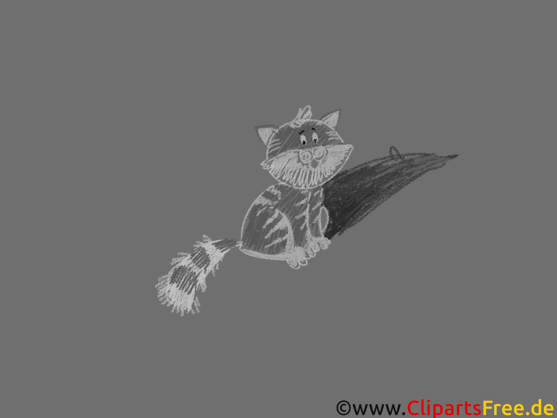 Katze Hintergrundbild