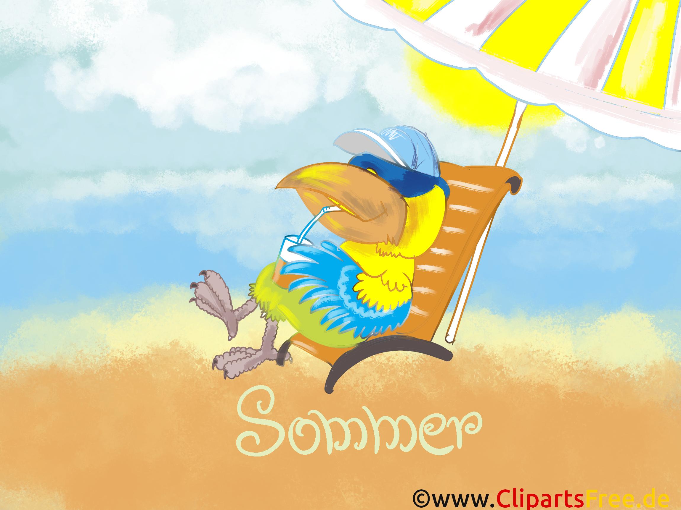 Sommerbilder kostenlos für Computer-Desktop