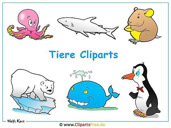 Wallpaper Tiere Cliparts