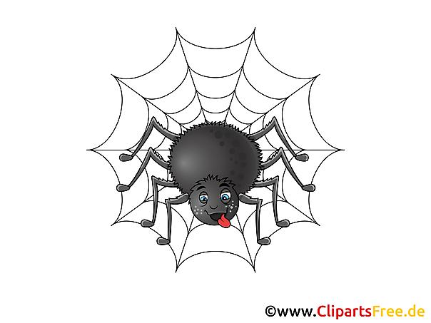 Clip art Spinne im Netz