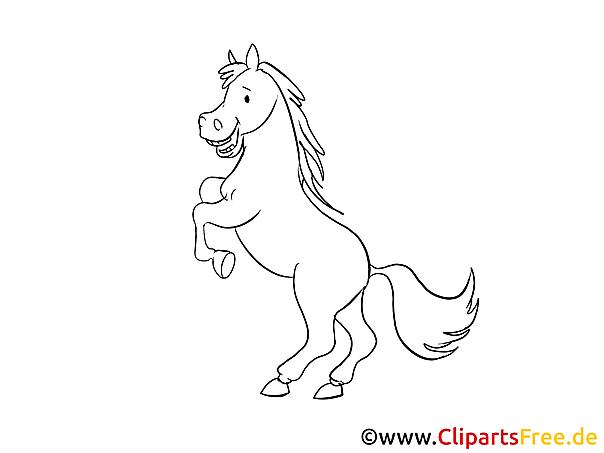 Pferde Skizzen