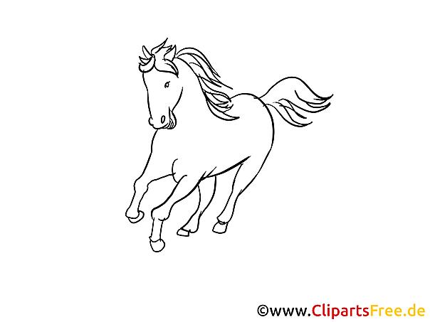 Pferde Zeichnungen Schwarz Weiss